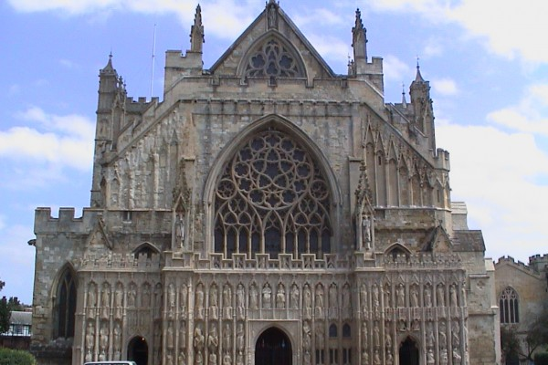 Pigeon Netting - Exeter Cathedral