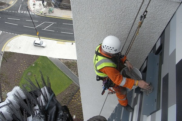 Installation of Bird Spikes by our Industrial Rope Access and Abseiling Team