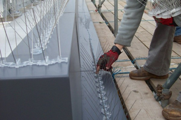 Installation of Bird Spikes by our Specialist Bird Control Team