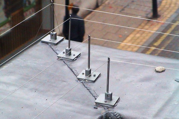 Pigeon Deterrents: Tensioned Bird Wire Systems
