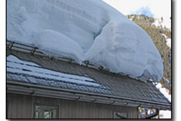 Snow Roof Guards and Ice Roof Guards