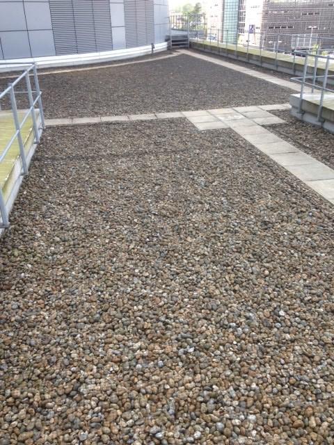 Pebble Ballast Netting Used For Bird Control Eco