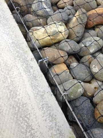 Seagulls Causing Considerable Damage To Pebble Ballast