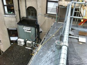 Bird Control Systems Prevent Birds' Access into Dublin Hospital
