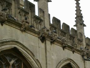 Bird Wire discreetly protects Oxford University Church of St Mary the Virgin
